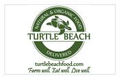 14-turtlebeach