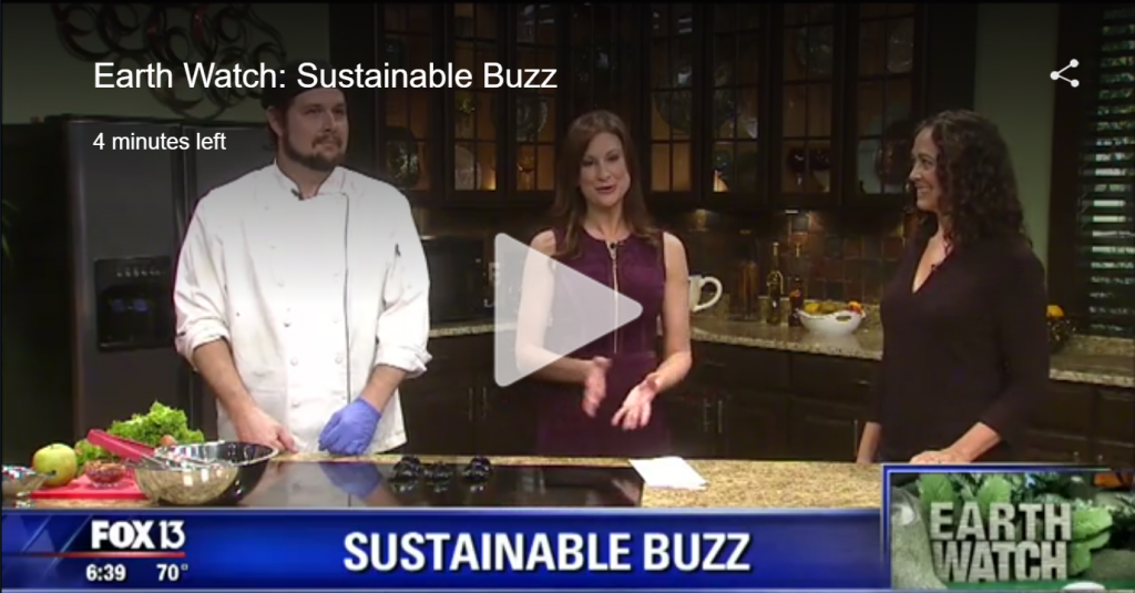 Cooking Demo for Sustainable Buzz