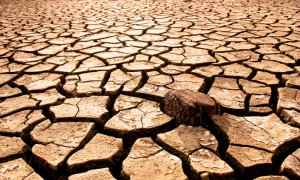 drought-dried-riverbed