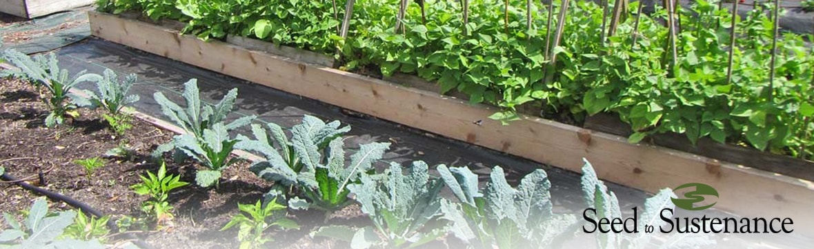We're Now Providing Matching Funds for Community Garden Startups