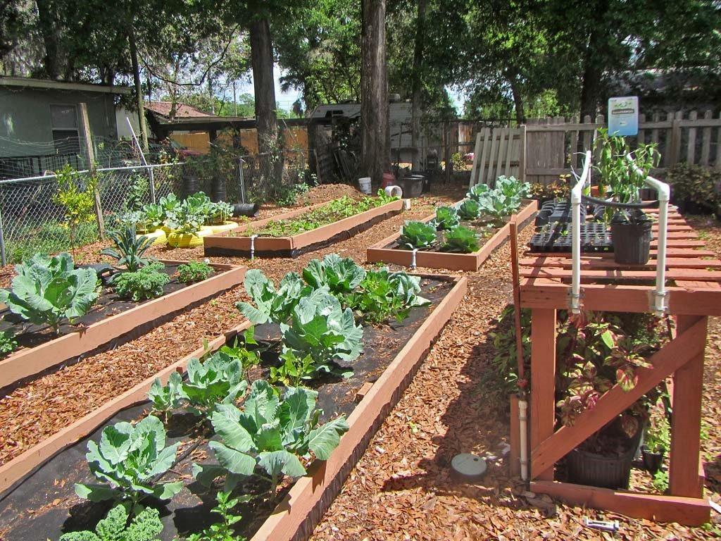 Gardening beds at the H.O.P.E. Community Garden.