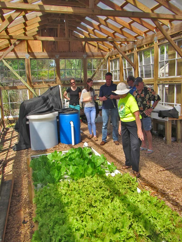 the group must be a non profit organization or have established community partnershipssponsorships with a non profit organization garden club church - How To Start A Community Garden