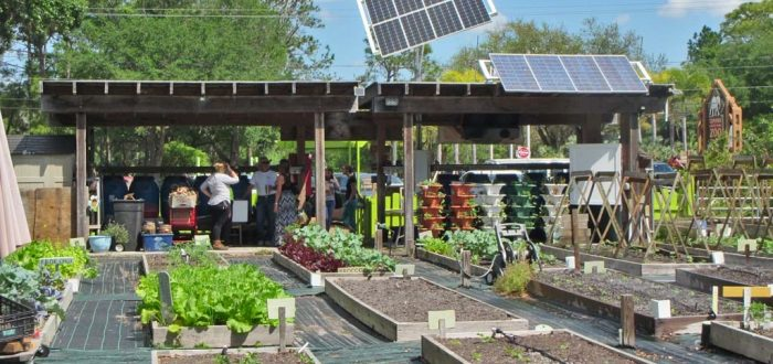 Sustany Tampa Community Garden Tour – The Sustany® Foundation
