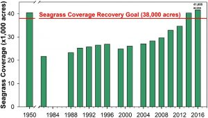 Seagrass coverage recovery goal Tampa Bay region 38,000 acres