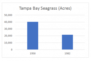 Tampa Bay seagrass in acres