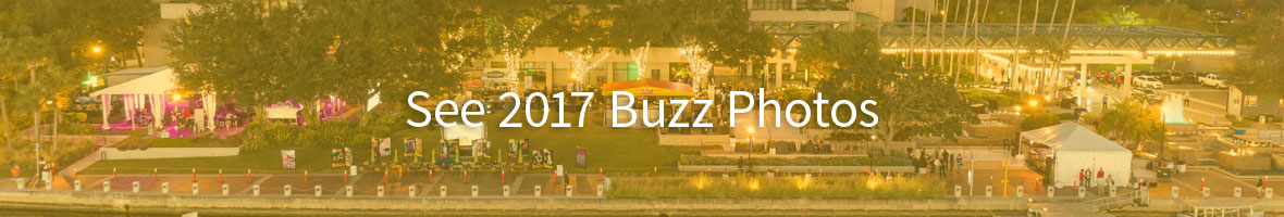 2017 Sustainable Buzz Photos